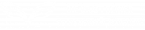 logo-kse-weiss.png